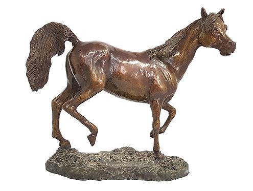 Arabian stallion sculpture by Ann Kilminster