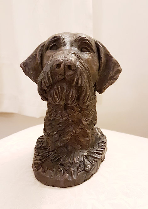 German Wirehaired Pointer Portrait in Cold Cast Bronze by Ann Kilminster