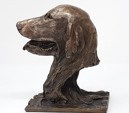 Flatcoated Retriever Male Portrait in Bronze