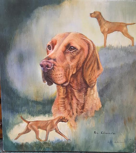 """Champion Vizsla Images"". Champion of champions at CRUFTS 2010 by Ann Kilminster"