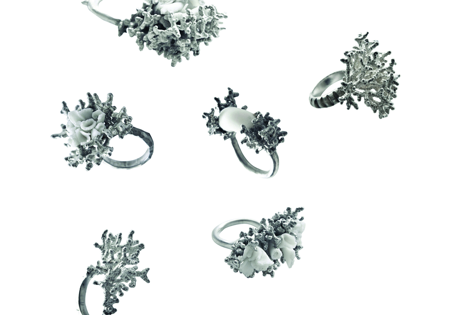 Silver Coral Rings