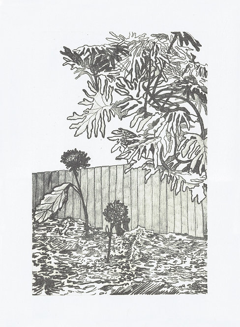 Adrienne Miller, Stone Lithograph