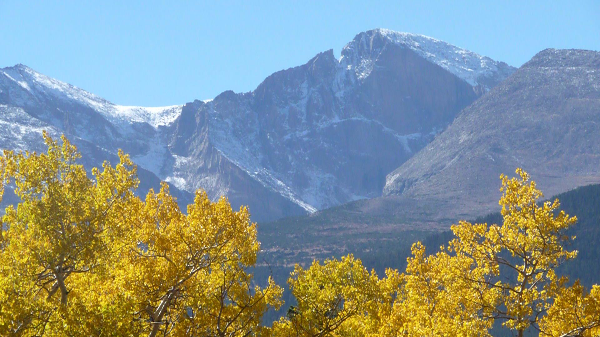 Longs Peak Upclose Gold