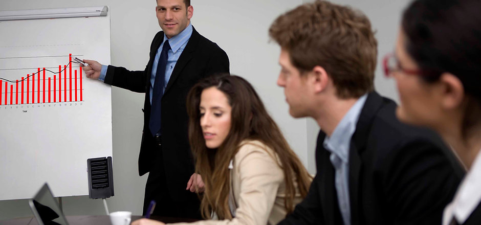 profesjonell Meeting