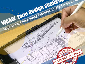 Farm Design Challenge 2021: Improving biosecurity features in small scale pig farms in Asia
