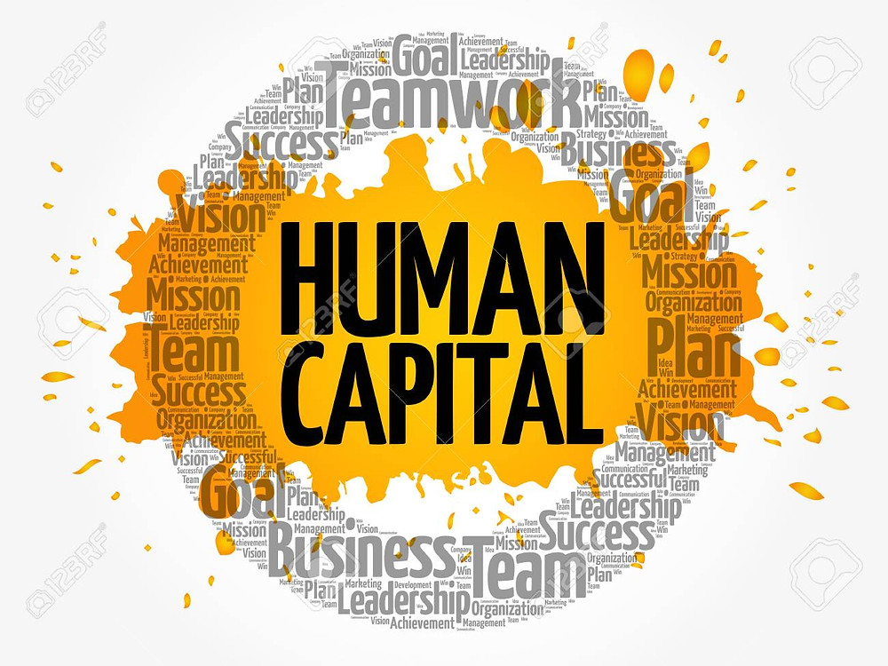 """""""The 2018 Deloitte Global Human Capital Trends report showcases the rapid rise of the social enterprise. This shift reflects the growing importance of social capital in shaping an organisation's purpose, guiding its relationships with stakeholders, and influencing its ultimate success or failure."""""""
