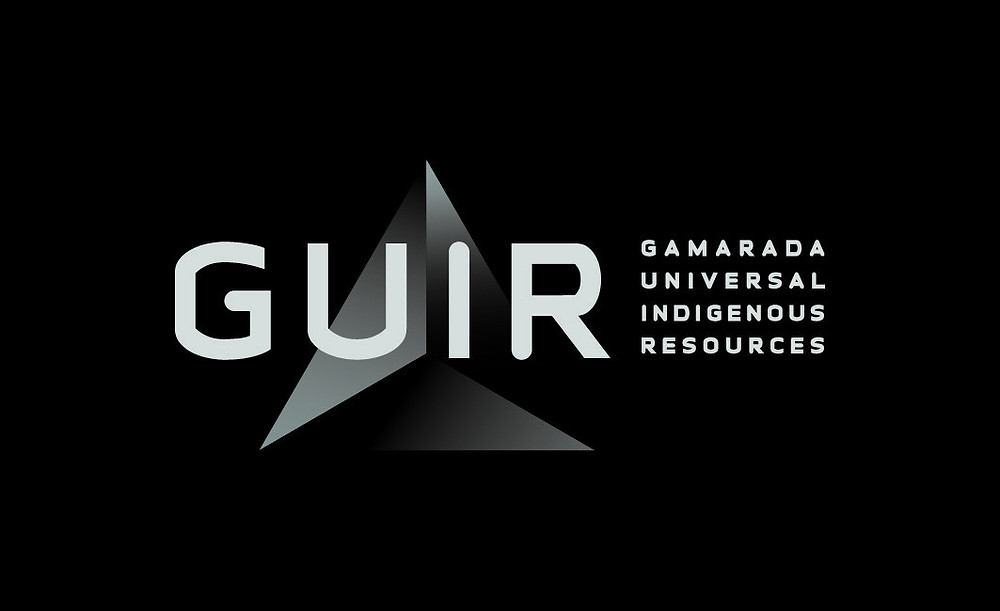 GUIR programs and services are a nexus between health, economic participation and community engagement. They are underpinned by a synergy of Health, Education, Employment and Justice initiatives.