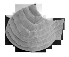 L&R Solaris Swell Spot Breast Pad (SP-09)