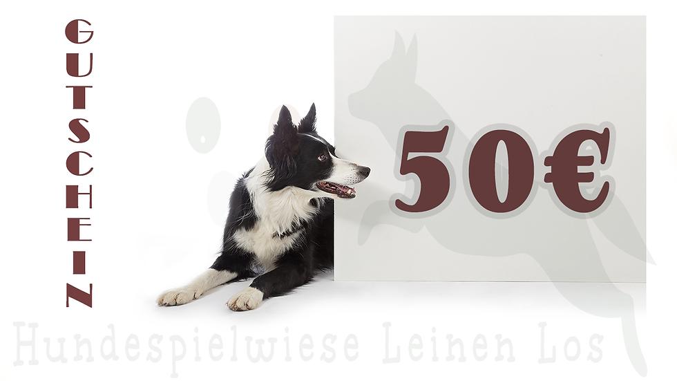 Gutschein Hundespielwiese 50€