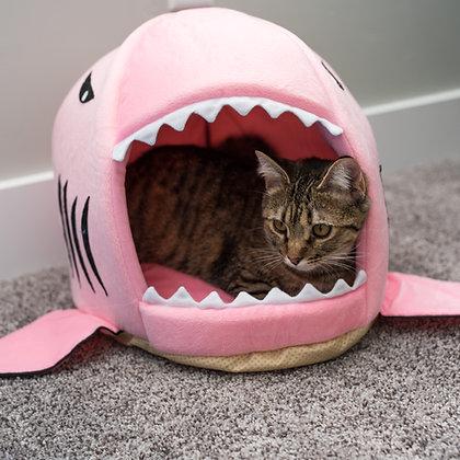 Pink Shark Cave