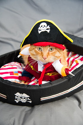 Pirate Bed