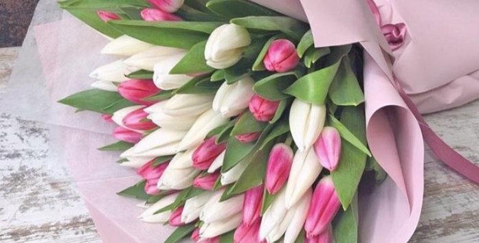 Mix 20 tulipánů