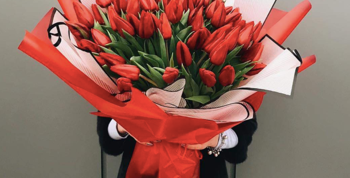 Tulipány v barvě dle výběru 50 ks