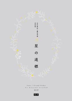 hoshino_HYOSHI