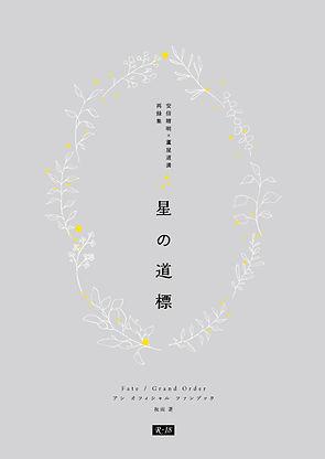 hoshino_HYOSHI.jpg