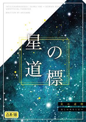 hoshino_COVER_re.jpg