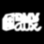 DMV Aux - Logo - WHITE (1).png