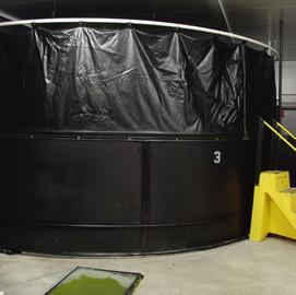 Custom fish storage tank