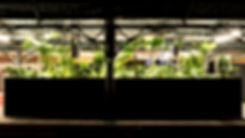 車站13.jpg