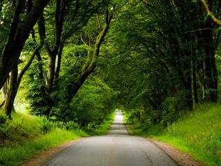 10 naturperler i Nordjylland