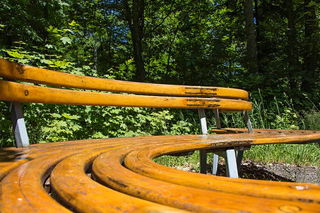 An s-curved bench made of oak with steel legs.