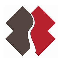 cropped-TeamRubicon_X_logo_brown-red_rgb