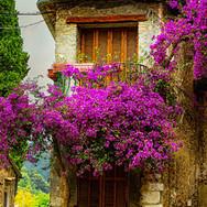 provencespain_FRANCE_Provence_ss_145666070_hero.jpg