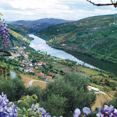 Douro_River_Valley_Portugal.jpg