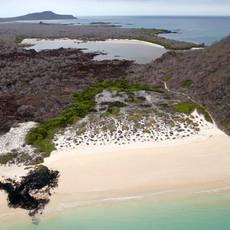 Island-conservation-floreana-galapagos-1