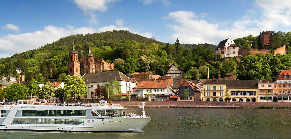 European river cruises travel planning ocean cruising wine-focused christmas markets Erin Smith ~ Affinity Group Travel Advisor