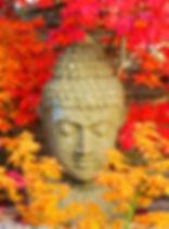 buddha-2505791.jpg