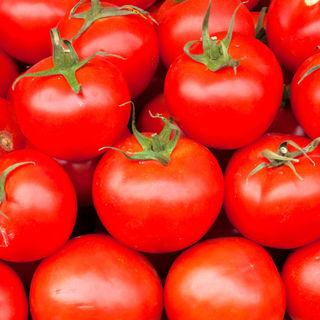 paradajiz-1-90_resize.jpg