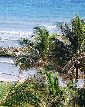 jamaica-816673_1920.jpg