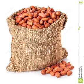 peanut-groundnut-bag-isolated-white-back