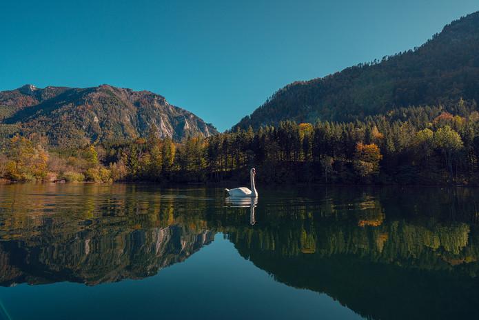 Lunzer See.jpg