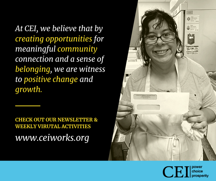 CEI new website.png