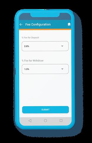ewallet-setup-phone.png