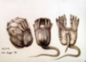 Alien 04.jpg