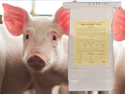 Safe-guard Bulk Dewormer (Fenbendazole-1lb)