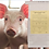 Thumbnail: Safe-guard Bulk Dewormer (Fenbendazole-1lb)
