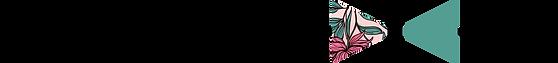 papiyon-nœud_noir-fond_transparent.png