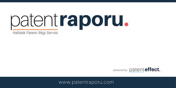 Copy of Copy of Copy of patentRaporu-log