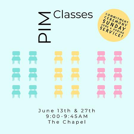 pim classes.PNG