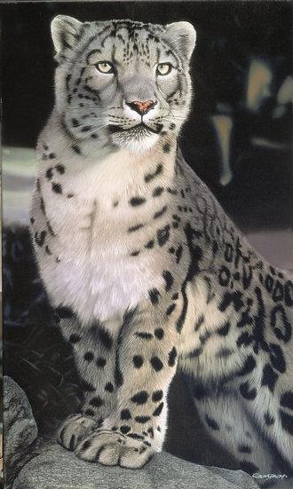 """GASPAR, SERGIO """"Gato de las nieves"""""""