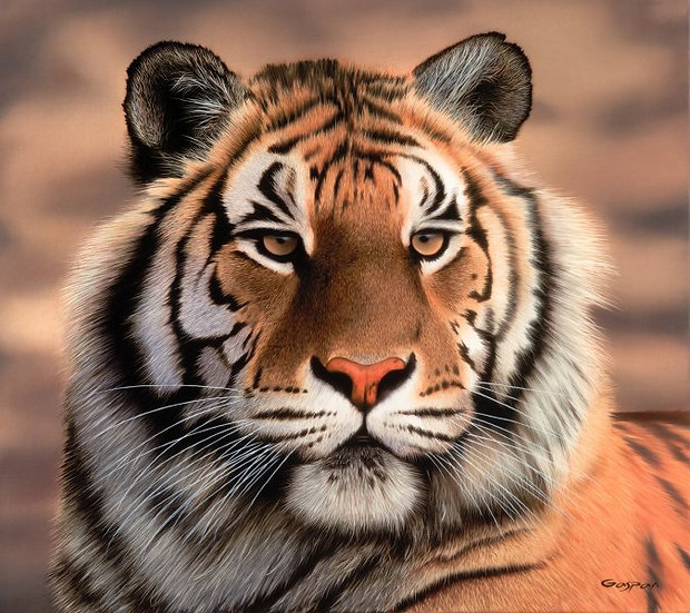 "GASPAR, SERGIO ""Tigre"""