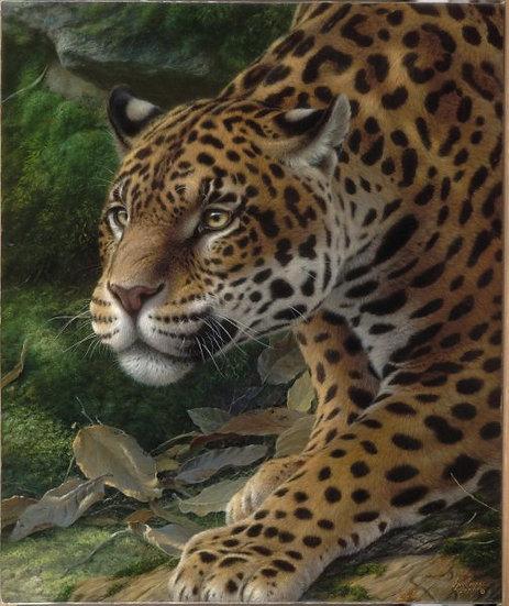 """CAMPOS, OSCAR """"Leopardo"""""""