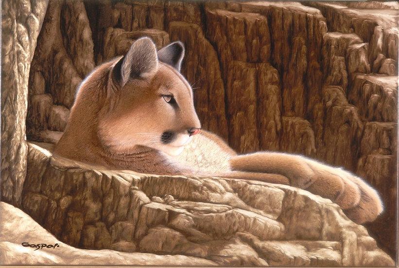 "GASPAR, SERGIO ""Puma"""