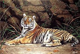 RAJADELL Tigre 60 x 80.jpg
