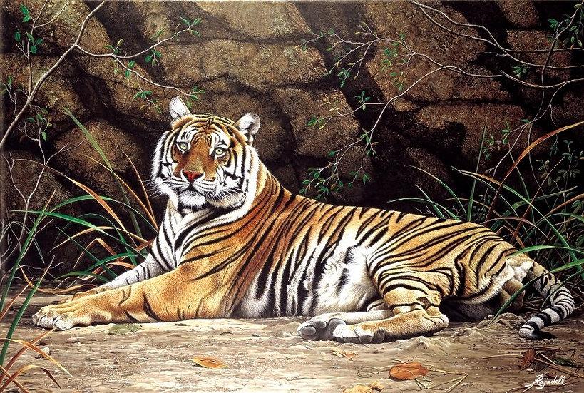 "RAJADELL, JORGE ""Tigre"""