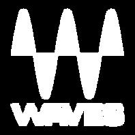 waves-logo-white.png